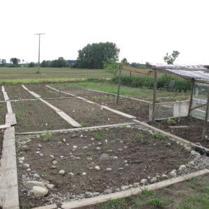 Überblick über den Garten.