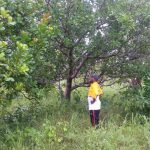 Bildgalerie Togo